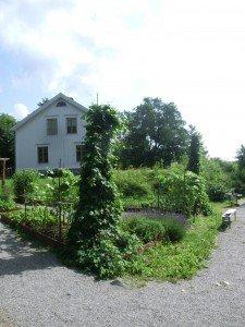 FärsnaTrädgårdar05-225x300